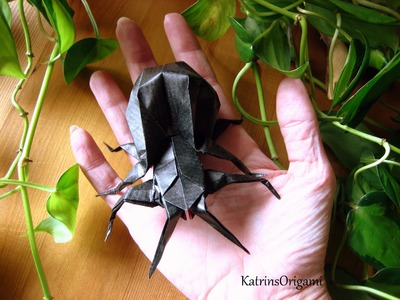 Origami ✲ Spider ✲ ( modular )