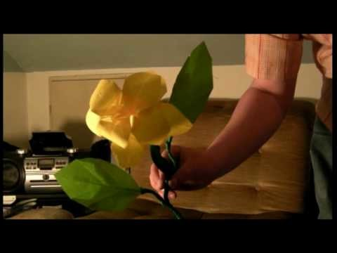 Origami Time lapse Flower (Blume)