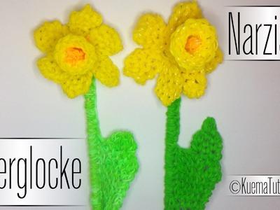 Rainbow Loom Osterglocke Narzisse. Narcissus
