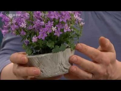 Pflanzenkübel und Windlichter aus Beton | Kaffee oder Tee?