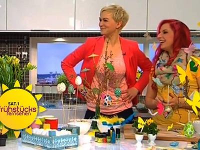 DIY: Osterdeko basteln mit Bine Brändle | Sat.1 Frühstücksfernsehen