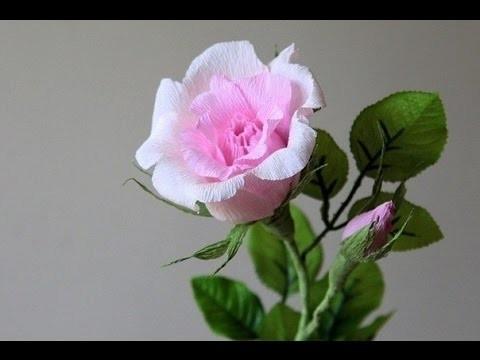 Rose basteln aus Papier. Rose basteln krepppapier. Rose selber basteln.