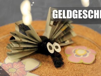 Geldgeschenk. Gift Of Money. Geschenkidee. Gift Idea. Mücken