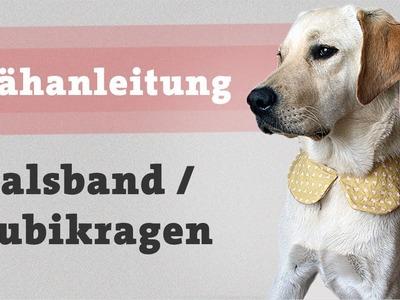Nähanleitung Hundehalstuch selber machen Halstuch nähen Kragen Hunde selber Bubikragen kostenlos