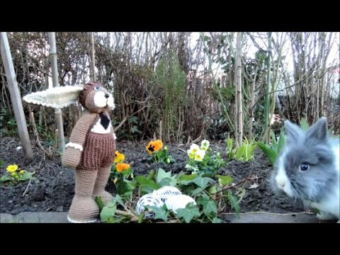 Hase contra Kaninchen HÄKELN CROCHET