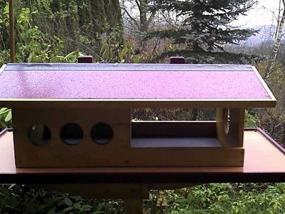 Winter - Futterhaus für Wildvögel selber Bauen
