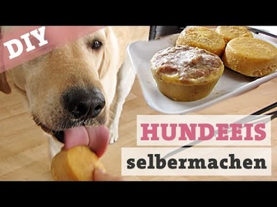 DIY Hundeeis mit Leber & Pfirsich – Eis für den Hund selber machen