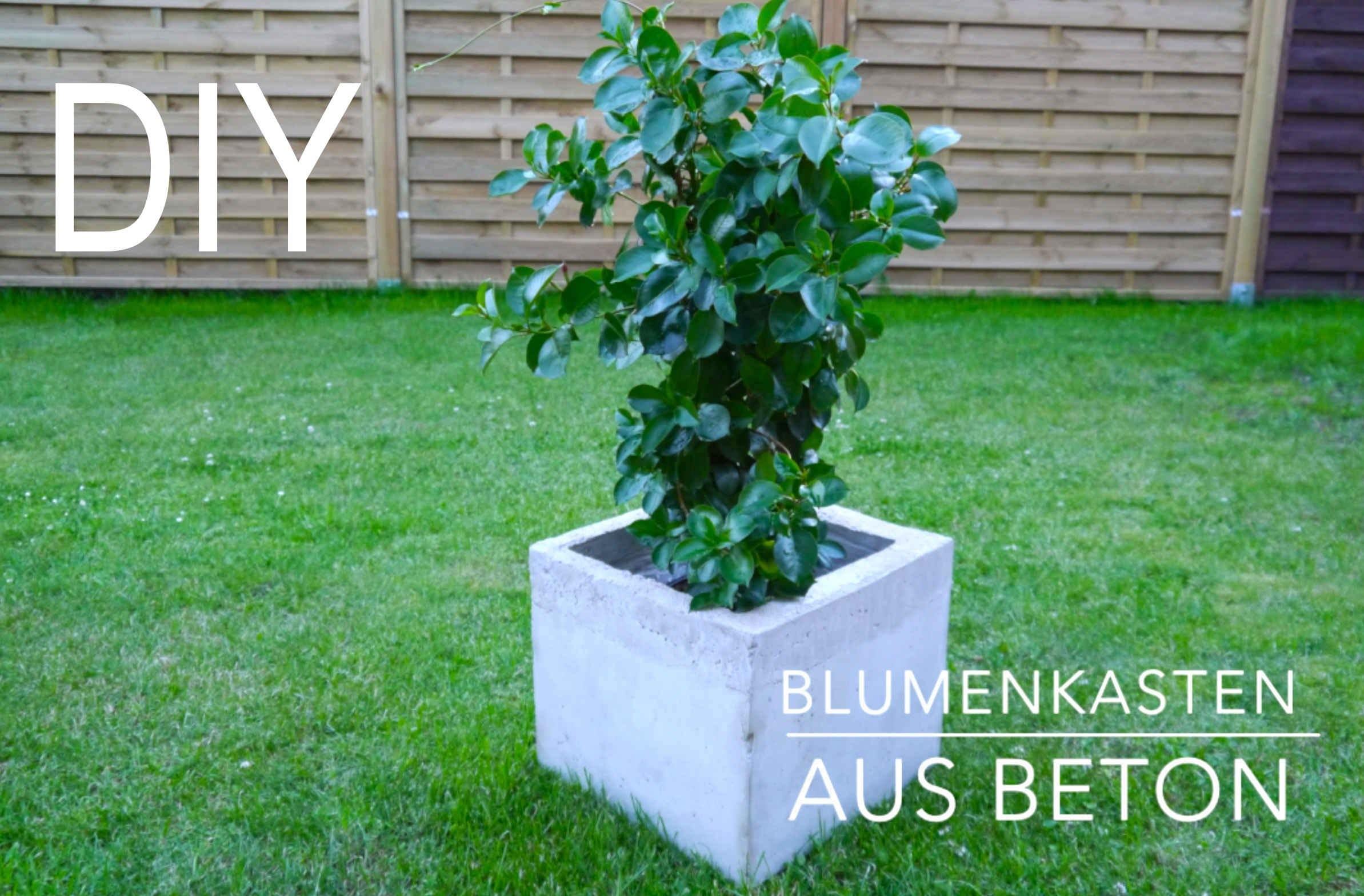 DIY Blumenkasten aus Beton Anleitung