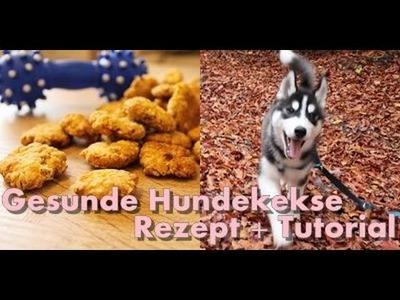 DIY Gesunde und einfache Hundekekse für jeden Hund. Husky Kenji☆ I ellylicious ♡