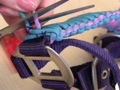 Do it Yourself: Halfter verschönern und Stirnband flechten
