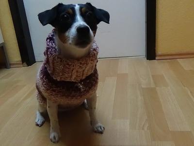 Hundepulli Liebling häkeln