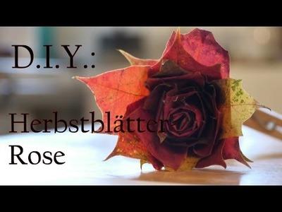 Herbstblätter-Rose ¦ D.I.Y.