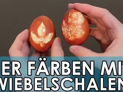 Ostern: natürlich Ostereier färben mit Zwiebelschalen | Geniale Fakten, Tricks & Lifehacks