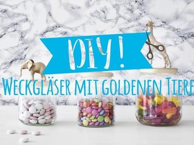 DIY Weckgläser im Animal-Style | WESTWING DIY-Tipps