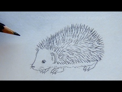 Zeichnen lernen: Igel zeichnen - Einfache Anleitung - Tiere mit Bleistift zeichnen - DIY