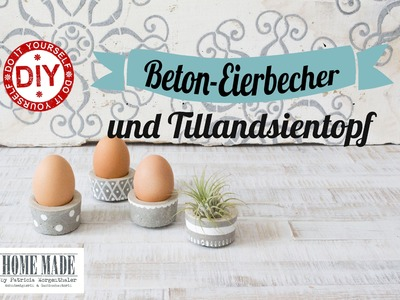 How to: Eierbecher I Tillandsien-Topf aus Beton I Deko Inspirationen selbstgemacht