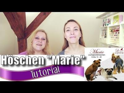 """Läufigkeitshöschen Marie von """"Le petit canine"""" - mit Anna von einfach nähen"""
