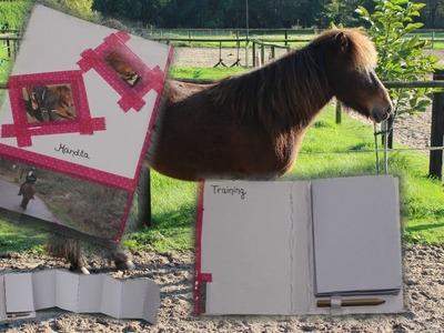 Pferde Trainingsbuch Do it Yourself