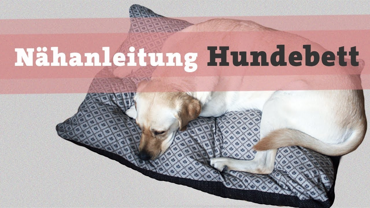 Nähanleitung Hundebett Hundekissen DIY selber nähen Hund Bett Kissen Katze video kostenlos Tutorial