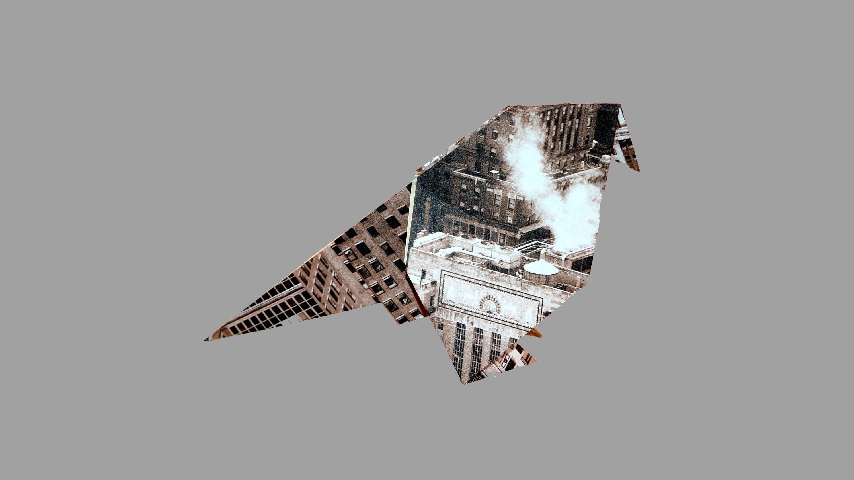 Origami Wellensittich (Budgerigar) - Faltanleitung (Live erklärt)