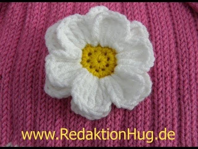 Häkeln - Häkelblume Margerite flach