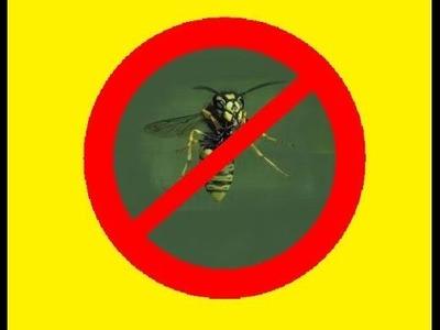DIY Wespenfalle selber bauen. Fliegenfalle  selber bauen. wespenfalle flasche. Life hack Sommer