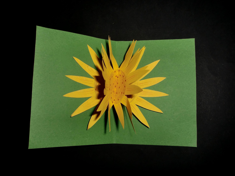 Kinderkarte mit Pop-up: Sunflowercard for Kids - Tutorial [HD.deutsch]