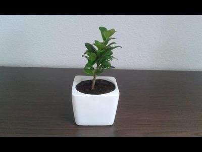 DIY Vase aus Beton selber gießen - Anleitung. Tutorial