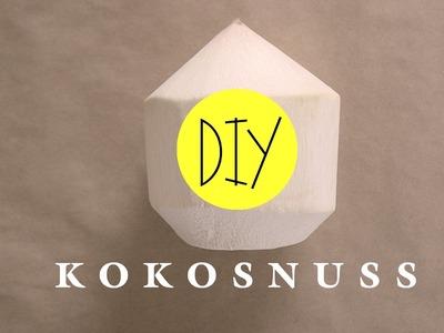 DIY - TRINKKOKOSNUSS ÖFFNEN OHNE BEIL - DO IT YOURSELF