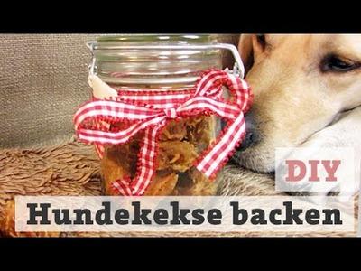 DIY Hundekekse Thunfisch selber backen – Leckerli für Hunde. Katzen machen Hundeleckerlies