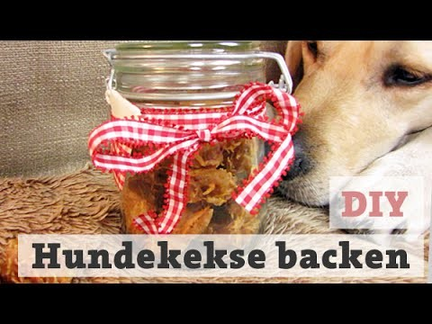 diy hundekekse thunfisch selber backen leckerli f r hunde katzen machen hundeleckerlies. Black Bedroom Furniture Sets. Home Design Ideas