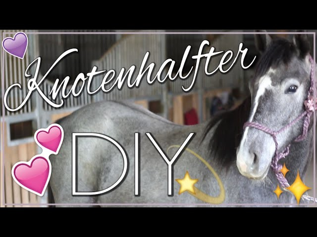 DIY KNOTENHALFTER ✮ Tutorial ♥ Anita Girlietainment