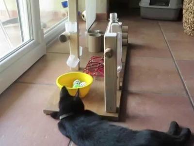 Fummelbrett de Luxe - für fortgeschrittene Fummel Katzen - funny cat
