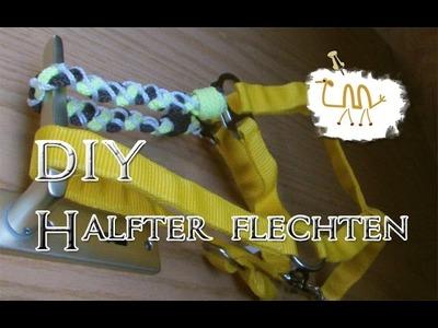 【DIY】 ~ Halfter flechten ~ Teil1 ~ 【Keltischer Knoten】