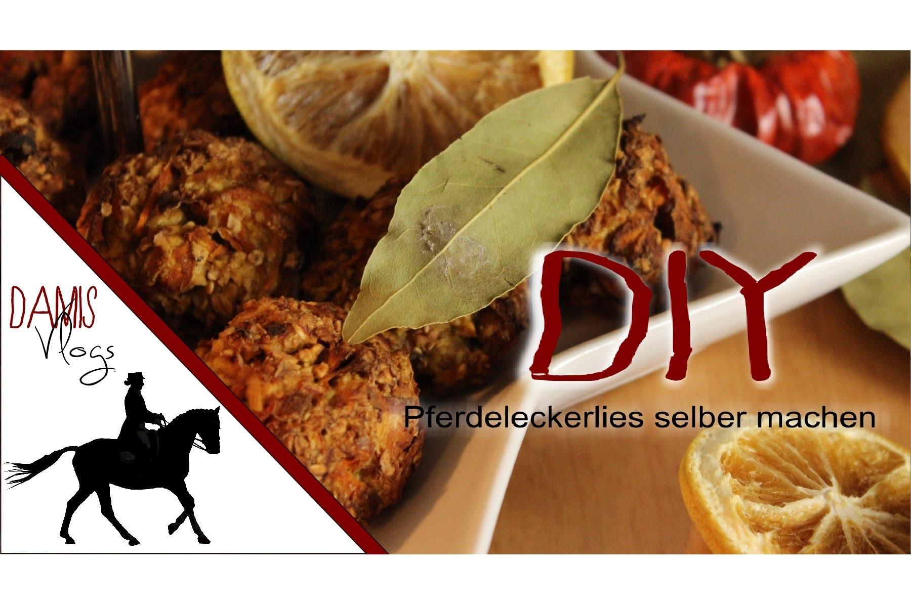 [DIY] | Pferdeleckerlies einfach & schnell selbst