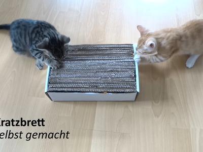 Selbst gemachtes Katzen Spielzeug - Kratzbrett - follow Salt&Pepper