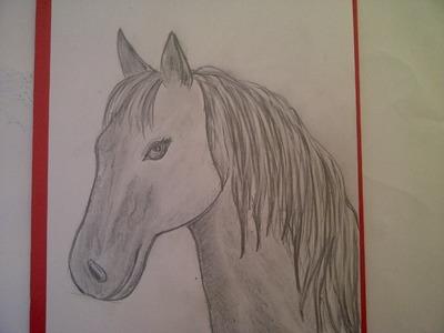 Zeichnen lernen für Anfänger. Pferd malen. Pferdeportrait. Pferdekopf.  Learn to draw a horse