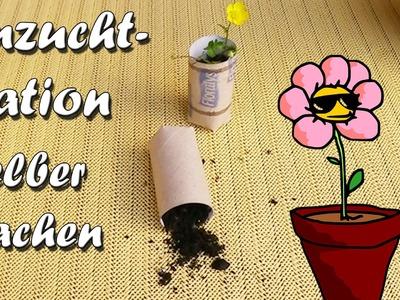 Anzuchtstation selber machen - Garten Trick - Pflanzen Lifehack by Lifehax