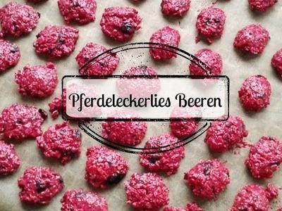 "DIY Pferdeleckerlies Beeren   ""Leckerliejahr"" November"