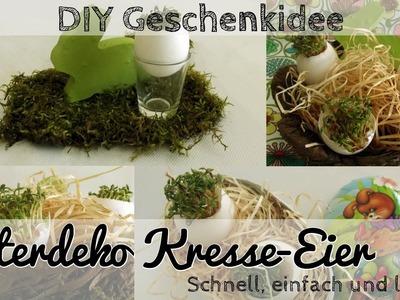 DIY Osterdeko Kresse Ei - Deko oder Geschenk für Ostern