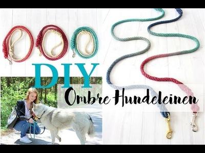 DIY Ombré Hundeleine