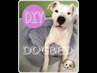 DIY - Dogbed for small dogs