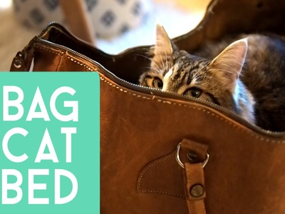 DIY Cat Bed aus einer Tasche | #Upcycling Katzenbett