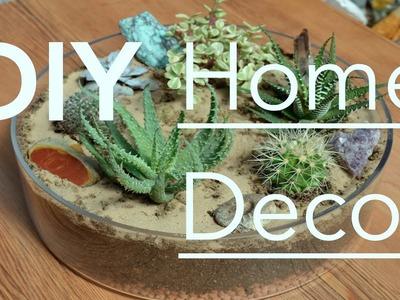 DIY ♢ Home Decor │ Sukkulenten und Kakteen │ Sophia