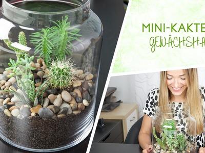 Mini-Kakteen Terrarium DIY