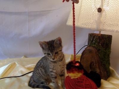 Keka : DIY Wir basteln eine Bommel ,Pompon- als TIER ; Katzen+Hunde SPIELZEUG;
