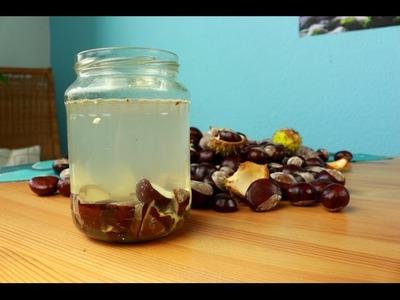 Selbstgemacht: Flüssigwaschmittel aus Kastanien (DIY, chemiefrei) Teil 2