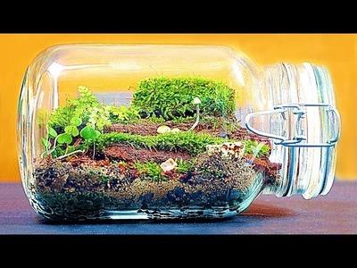 Wie man ein großes ewiges Terrarium macht!