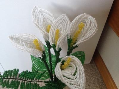 Drachenwurz aus Perlen. Calla Blume. Teil 1.2