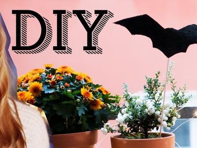 Room Tour - mein Balkon + Halloween DIY